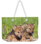 Wolf Cubs On Log Weekender Tote Bag