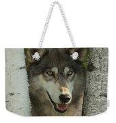 Wolf In The Birch Trees Weekender Tote Bag