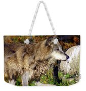 Wolf On Patorl Weekender Tote Bag