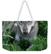 Wolf Pup Portrait Weekender Tote Bag