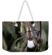 Wolf Spider With Egg Sac Weekender Tote Bag