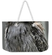 Wonderful Patterned Feathers On A Tawny Frogmouth Bird Weekender Tote Bag