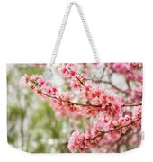 Wonderful Pink Cherry Blossoms At Floriade Weekender Tote Bag