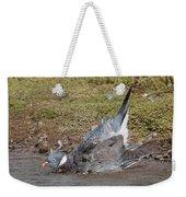 Wood Pigeon Washing Weekender Tote Bag