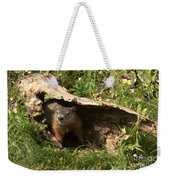 Woodchuck Ready For Spring Weekender Tote Bag