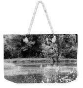 Wooded Pond Weekender Tote Bag
