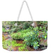 Woodland Stream Forest Interior Weekender Tote Bag