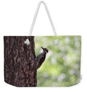 Woodpecker In New Mexico Weekender Tote Bag