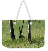 Woodpecker Snack Time Weekender Tote Bag