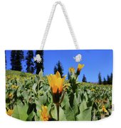 Woolly Mule's-ear At Lassen Park Weekender Tote Bag