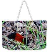 Wooly Bear 1 Weekender Tote Bag