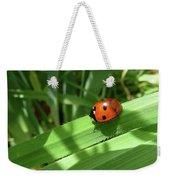 World Of Ladybug 1 Weekender Tote Bag