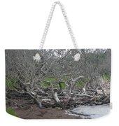 Wrack And Driftwood Weekender Tote Bag