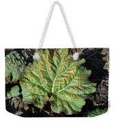 Wrinkled Green Rhubarb Leaf Weekender Tote Bag
