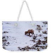 Wyoming Big Horn Weekender Tote Bag