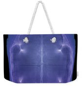 X-ray Of A Turtle Shell Weekender Tote Bag