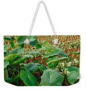 Yams Farm In Azores Weekender Tote Bag