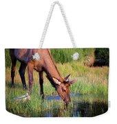 Yearling Elk Weekender Tote Bag