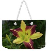 Yellow And Marron Flowering Lily In A Garden Weekender Tote Bag