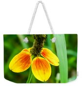 Yellow And Orange Clasping Coneflower Weekender Tote Bag