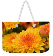 Yellow And Red Autumn Mums Closeup I Weekender Tote Bag