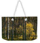 Yellow Autumn Trees In Forest Weekender Tote Bag