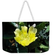 Yellow Bonnet, Cactus Weekender Tote Bag