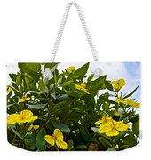Yellow Poppy Bush Flowers At Pilgrim Place In Claremont-california Weekender Tote Bag