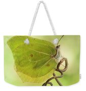 Yellow Butterfly On The Branch Weekender Tote Bag