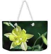 Yellow Columbine Squared Weekender Tote Bag