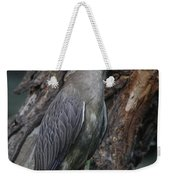 Yellow Crested Night Heron On Log Weekender Tote Bag