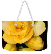Yellow Crocus Closeup Weekender Tote Bag