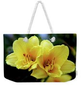 Yellow Daylilly 0204 H_2 Weekender Tote Bag
