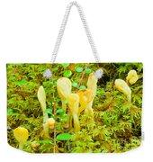 Yellow Fairy Fan Mushrooms Spathularia Flavida Weekender Tote Bag