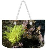 Yellow Feather Star Weekender Tote Bag