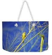 Yellow Fronted Canary Weekender Tote Bag