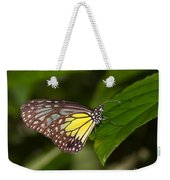 Yellow Glassy Tiger Butterfly Weekender Tote Bag