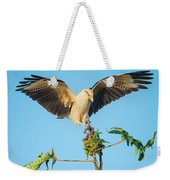 Yellow-headed Caracara Milvago Weekender Tote Bag