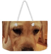 Puppy Face Weekender Bag