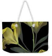 Yellow Lily On Black Weekender Tote Bag