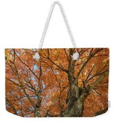 Yellow Maple Tree Weekender Tote Bag