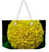 Yellow Marigold Flower On Black Background Weekender Tote Bag