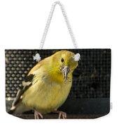 Lesser Female Goldfinch Having Lunch Weekender Tote Bag
