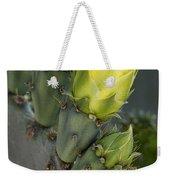 Yellow Prickly Pear Cactus Bloom Weekender Tote Bag