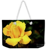 Yellow Rose - After The Rain Weekender Tote Bag