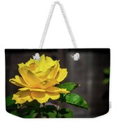 Yellow Rose Of Los Gatos Weekender Tote Bag