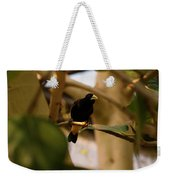 Yellow-rumped Cacique 3 Weekender Tote Bag