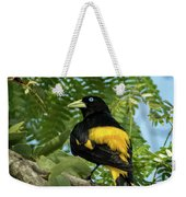 Yellow Rumped Cacique Weekender Tote Bag
