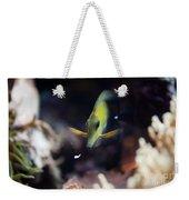 Yellow Spotted Aquarium Fish Weekender Tote Bag