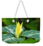 Yellow Trillium Flower Trillium Luteum Weekender Tote Bag